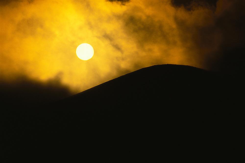 Работы знаменитого фотографа-анималиста мира Frans Lanting (40 фото - 7.01Mb)